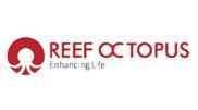 Reef Octopues