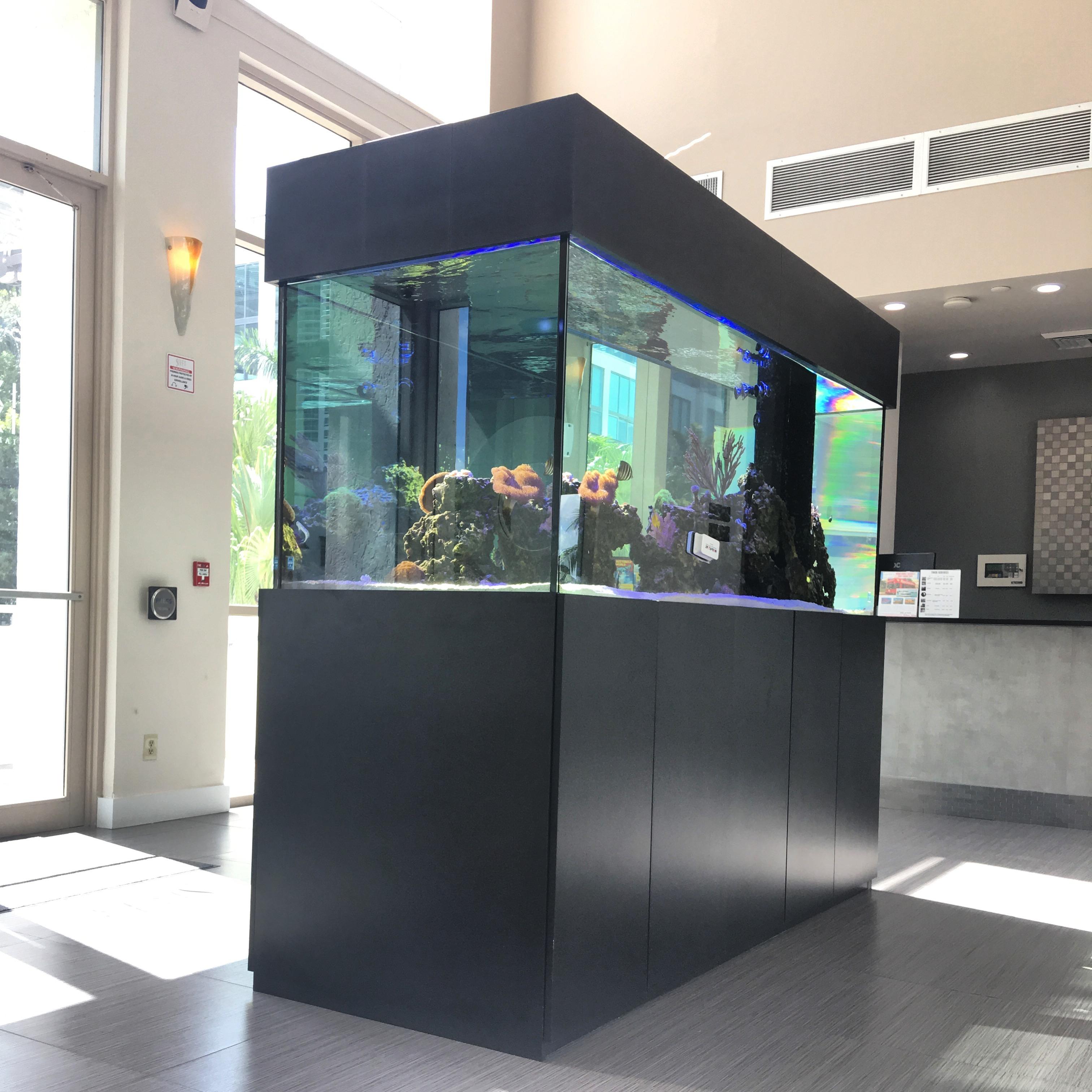 custom-aquarium-22