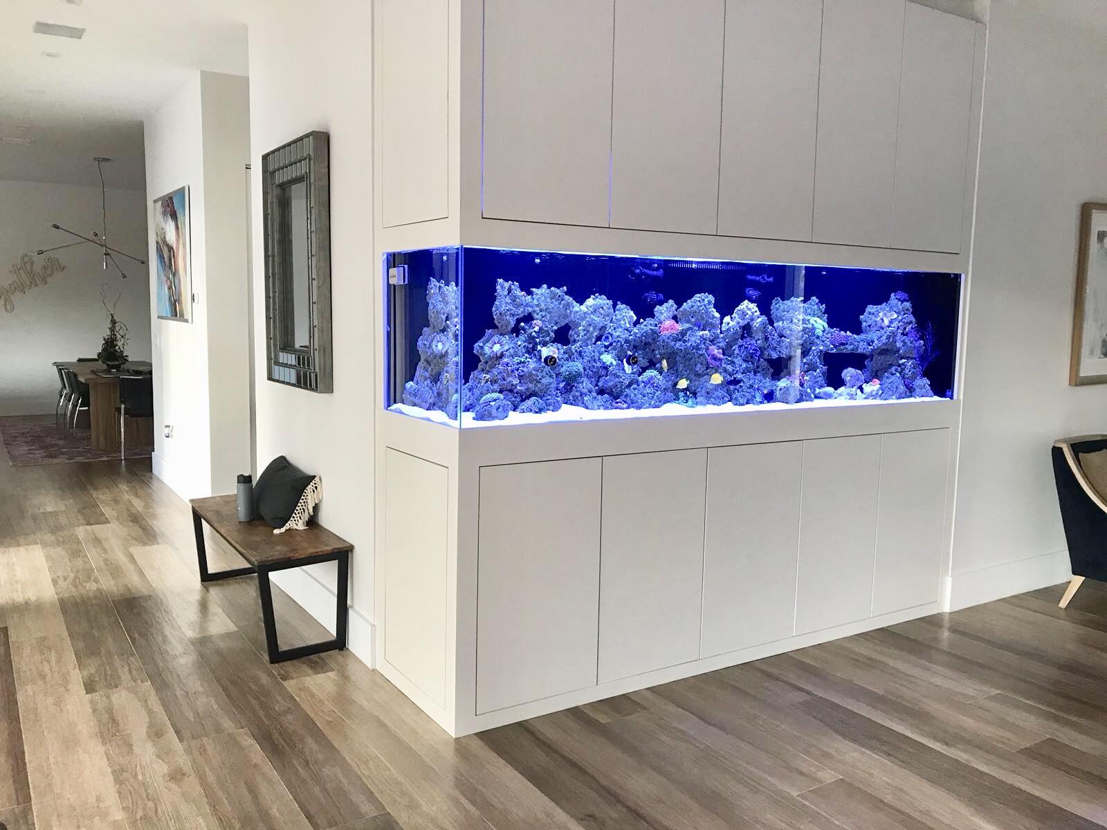 custom-aquarium-5
